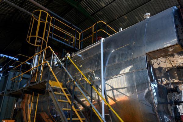 uclsawmill-july2020-10981E9E06D4-3CCA-2272-C884-9F0F14BEE3BC.jpg