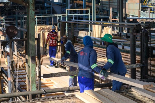 uclsawmill-july2020-588DE55836E-FC51-C84B-2ED8-D43860F913A2.jpg