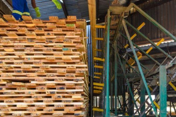uclsawmill-july2020-6135029556C-6F02-F60C-C46C-2D931F7C5F38.jpg