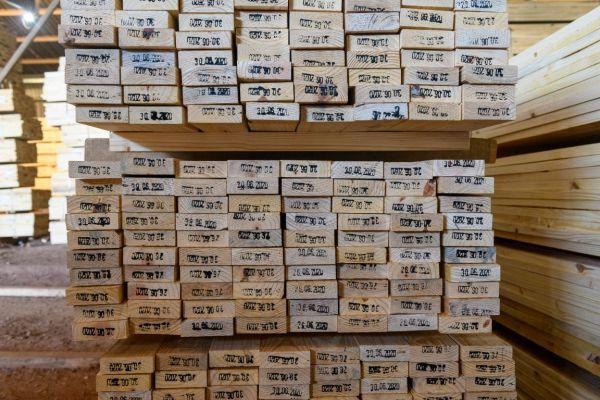 uclsawmill-july2020-797E3570535-A732-B285-5071-6A1AFF405E3D.jpg